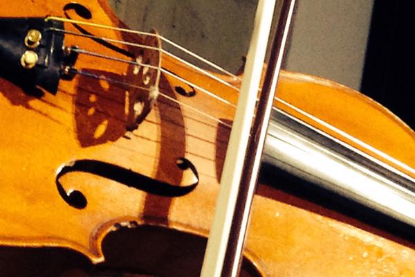 Clases de violín en Bilbao con Ledian Mola